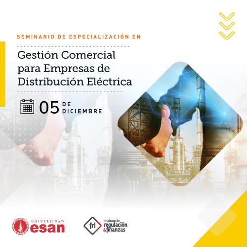 Seminario de Especialización en Gestión Comercial para Empresas de Distribución Eléctrica