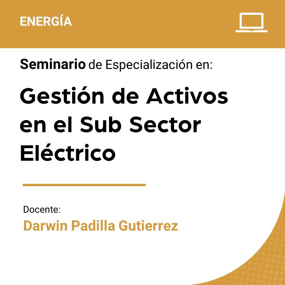 Seminario de Especialización en Gestión de Activos en el Sub Sector Eléctrico