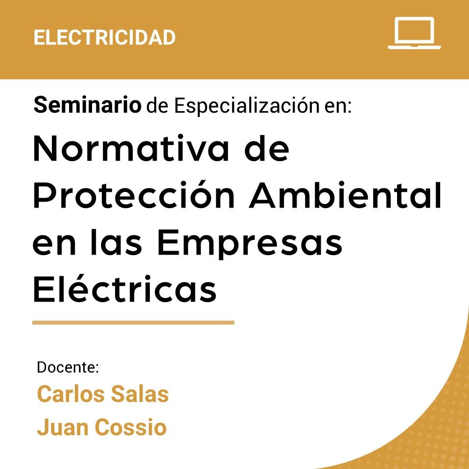 Seminario de Especialización en la Normativa de Protección Ambiental en las Empresas Eléctricas