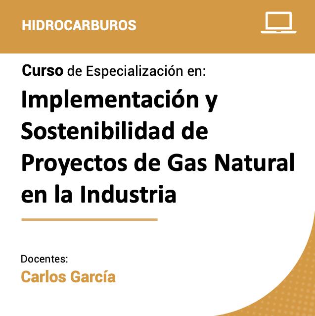 Curso de Especialización en Implementación y Sostenibilidad de Proyectos de Gas Natural en la Industria