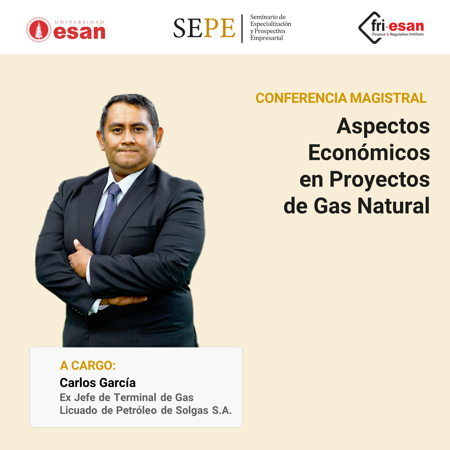 Aspectos Económicos en Proyectos de Gas Natural